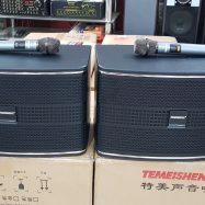 Temeisheng TK8-1